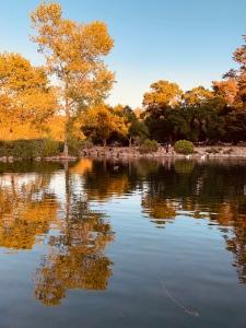 Lake  Ralphaline, Santa Rosa
